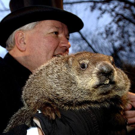Groundhog Day: Who Do You Trust More, a Rodent or the Weatherman?