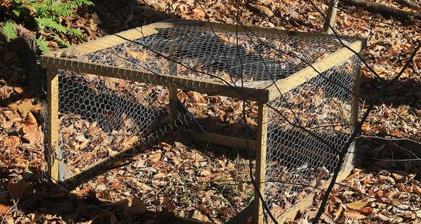 Hunting Snares: Types and How to Build One