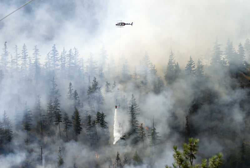 Wildfire Smoke: Know Your Risks - Be Prepared - Emergency Essentials