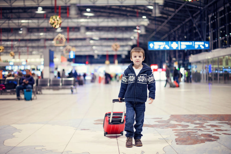 Top Hacks to Prepare Your Home for Holiday Travel - Be Prepared - Emergency Essentials