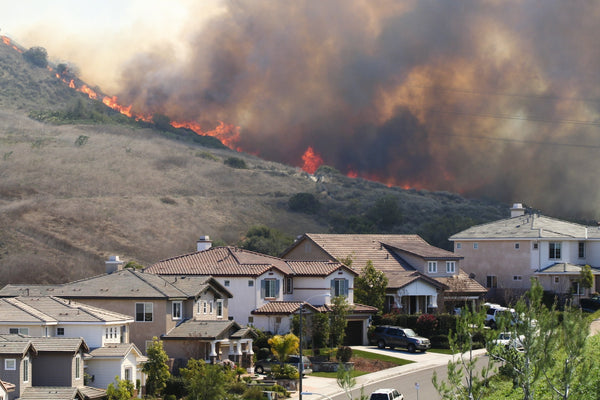 What's in a Wildfire Preparedness Kit? - Be Prepared - Emergency Essentials