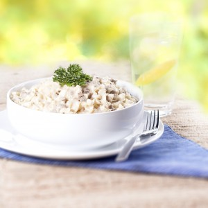 Mountain House Reviews Beef Stroganoff