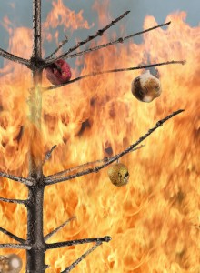 Prevent holiday fires in your home