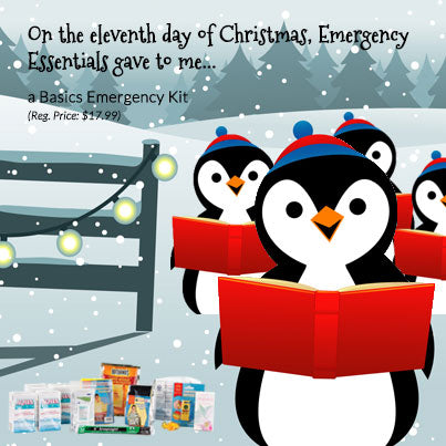 12 days of Giveaways--Day 11: Basics Emergency Kit