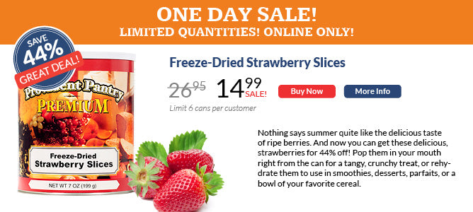 One Day Sale on Freeze-Dried Strawberries