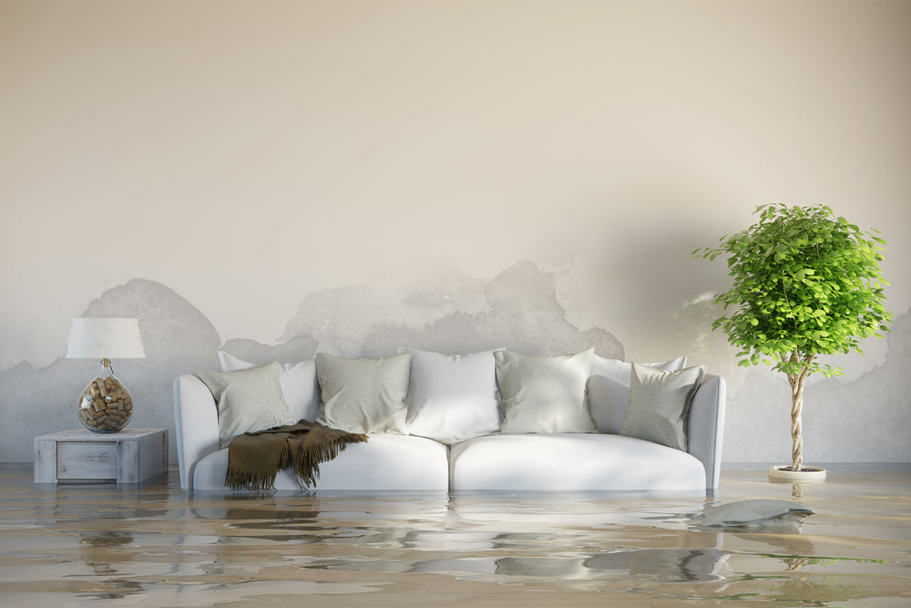 Flood in your home