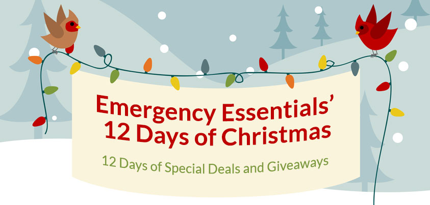 12 Days of Giveaways--Day 12