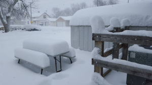 Lots of snow - The Weather Channel - unusual winter