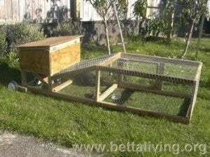 Diy Project Build Your Own Rabbit Hutch Emergency Essentials Blog