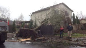 Tree Fell on House - via The Weather Network - atmospheric river