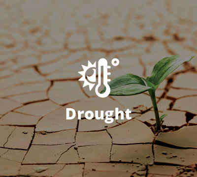 Drought Download Guide