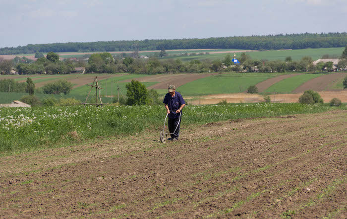 man plowing field with hand plow