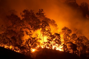 Tips for Wildfire and House Fire Preparedness - Emergency Essentials