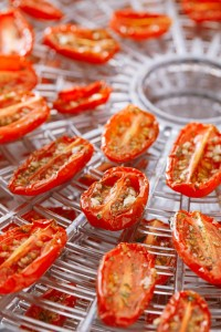 Preparedness Basics: How to Use a Dehydrator