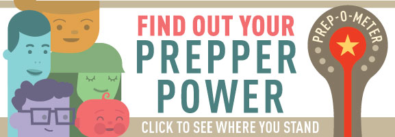 Replace Out Your Prepper Power