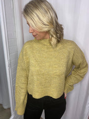 Karina Crop Sweater