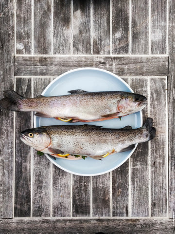 Grilling 101: The Basic of Grilling Fish & Seafood