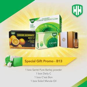 Special Gift Promo B13