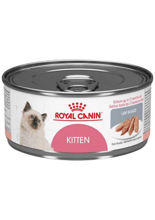 Royal Canin Development Kitten Feline Lata 0.168 Kg.