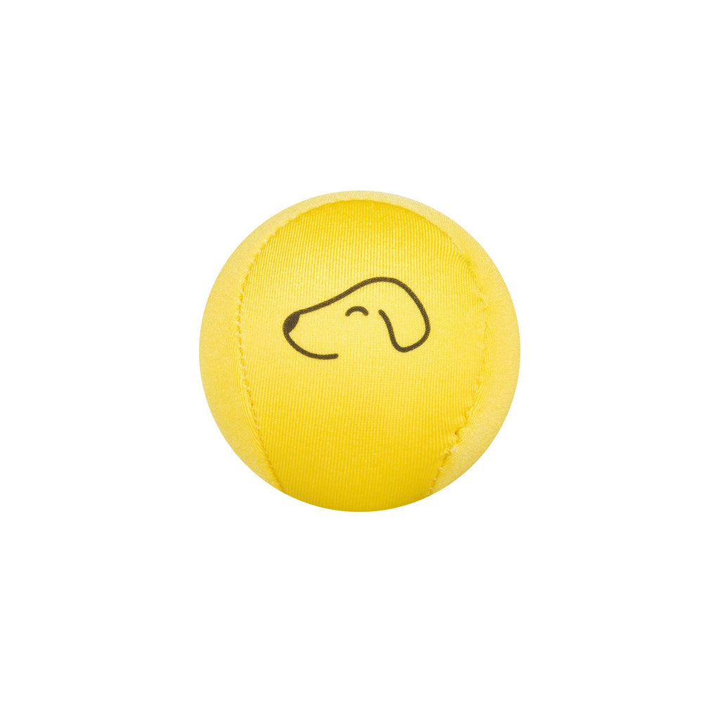 Fetch Dog Ball