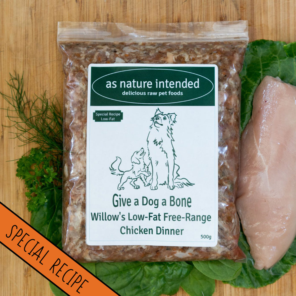 Willow's Low Fat Chicken: for Pancreatic Illness