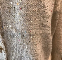 Sabrina Sequin Sweater