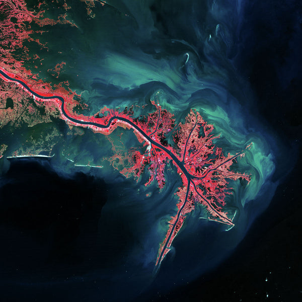 Mississippi River Delta, USA