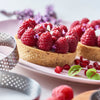 Perforated Round Tart Ring Height 0.8""