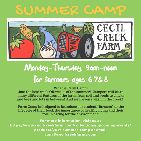 2018  Summer Camp at CecilCreekFarm
