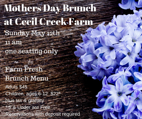2019 Mother's Day Brunch at the Farm