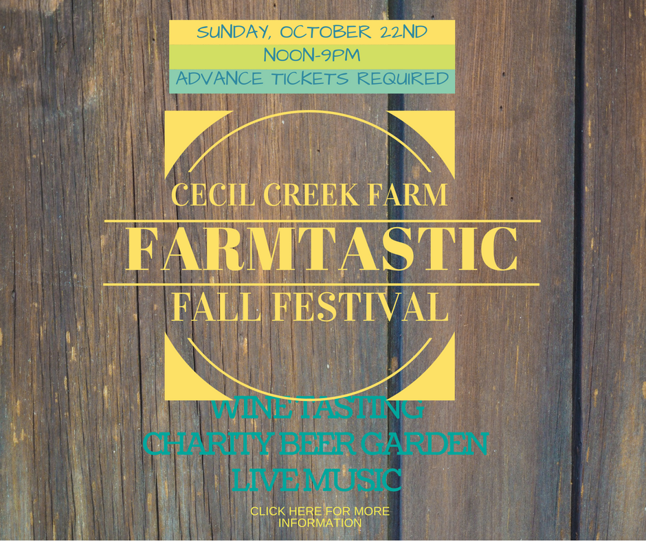 FARMTASTIC FALL FESTIVAL