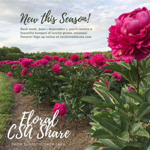 2020 Floral CSA Share