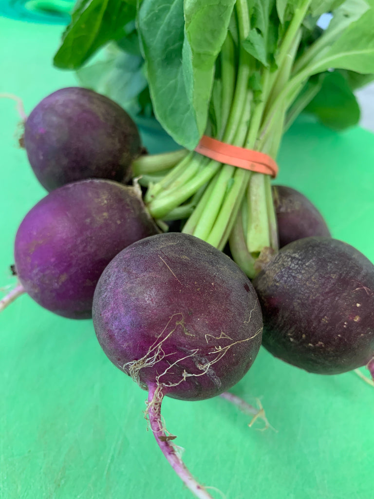 Produce, Lancaster Farm Fresh, Organic Purple Radishes, 1 bunch