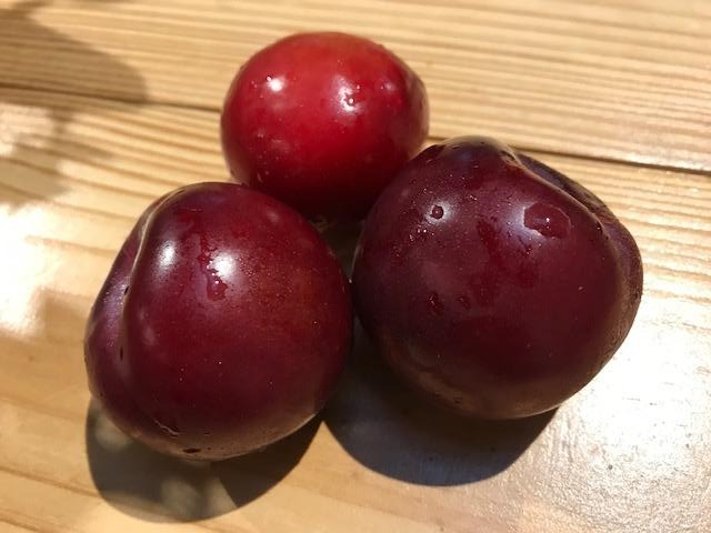 Fruit, Organic Red Plums, 1 each