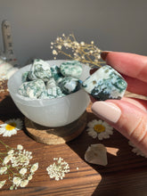 Load image into Gallery viewer, Tree Agate Tumble stone