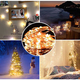 Fairy String Light 5 M 50 LED's Light Waterproof Warm White (Pack of 1)