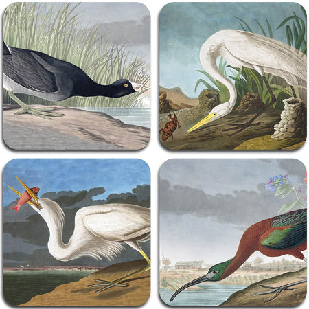 Audubon Birds Coasters - Set 1 - club matters