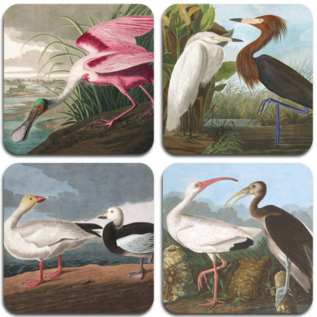 Audubon Birds Coasters - Set 2 - club matters