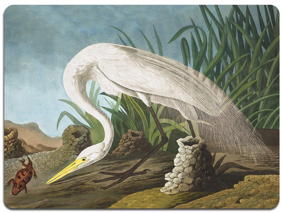 Audubon Birds Table Mats - Set 1 - club matters