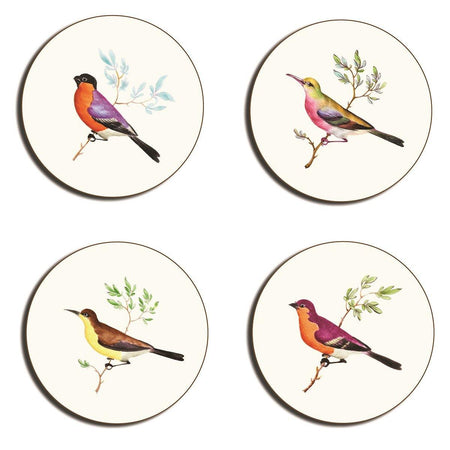 Exotic Birds Coasters - club matters