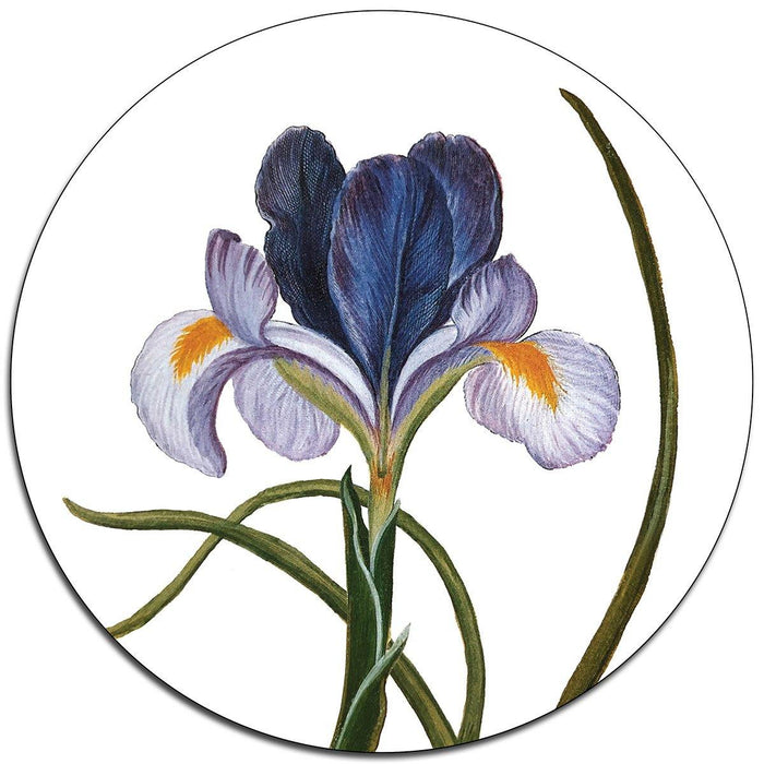 Irises Table Mats - club matters