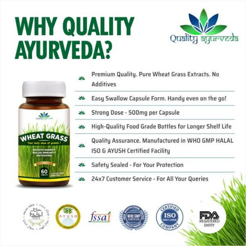 Buy-Quality-Ayurveda's-Wheat-Grass