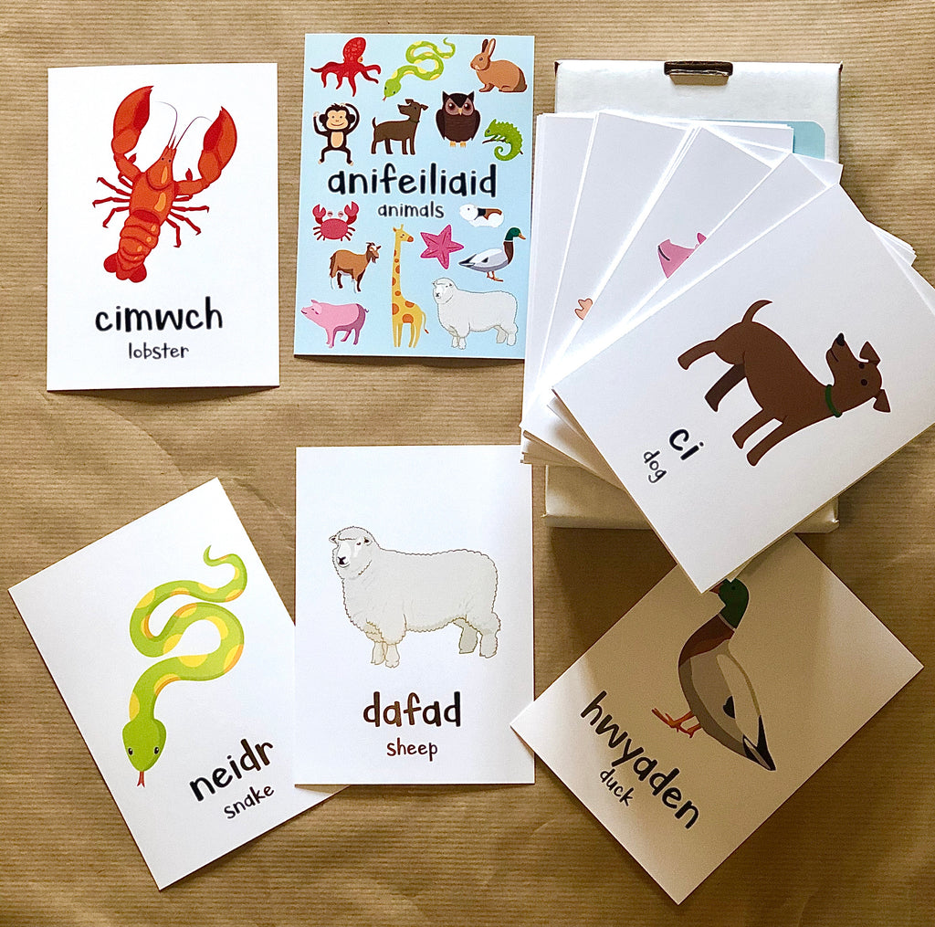 Welsh Language Animal Flash Cards