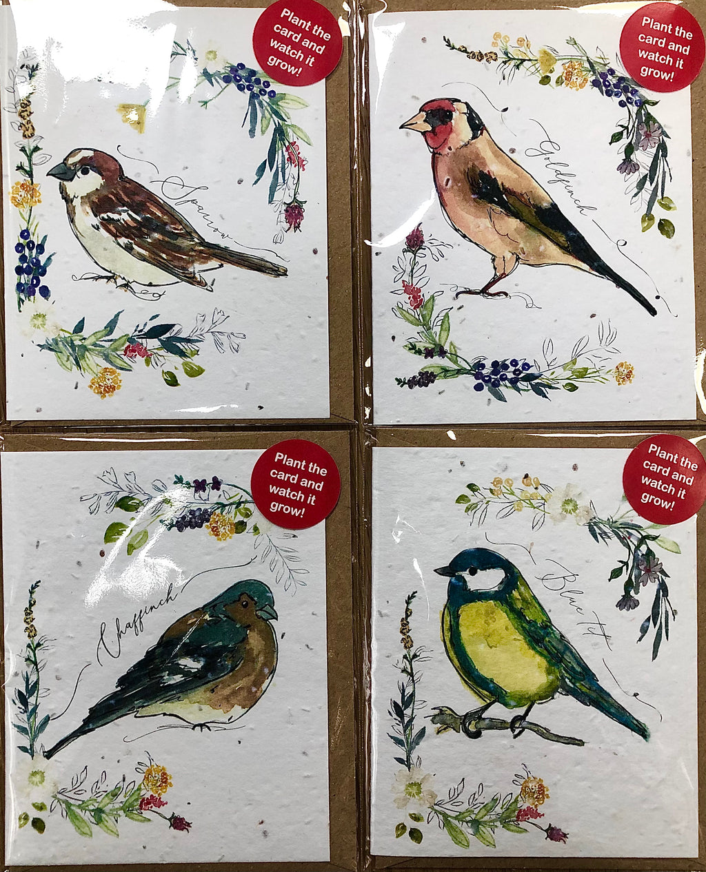 Plantable Seed Cards - Pack of 4 - Wild Birds Collection