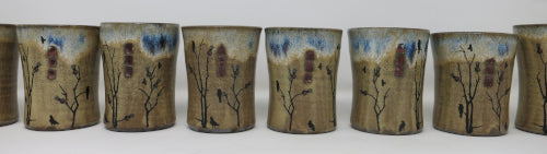 raven water cups