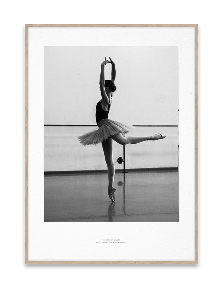 Paper Collective | Essence of Ballet 04