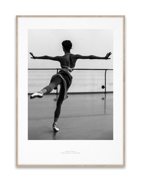 Paper Collective | Essence of Ballet 05