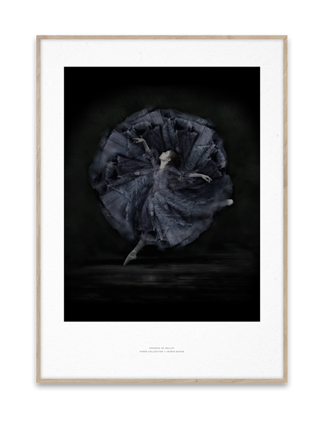 Paper Collective | Essence of Ballet 06