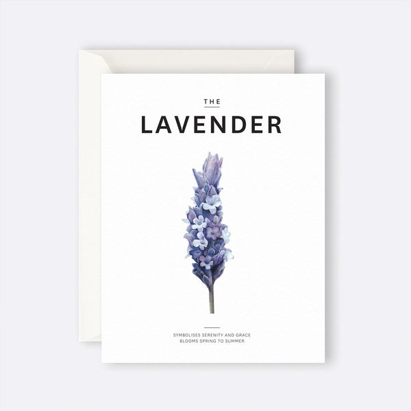 Father Rabbit Stationery | Card | THE LAVENDER