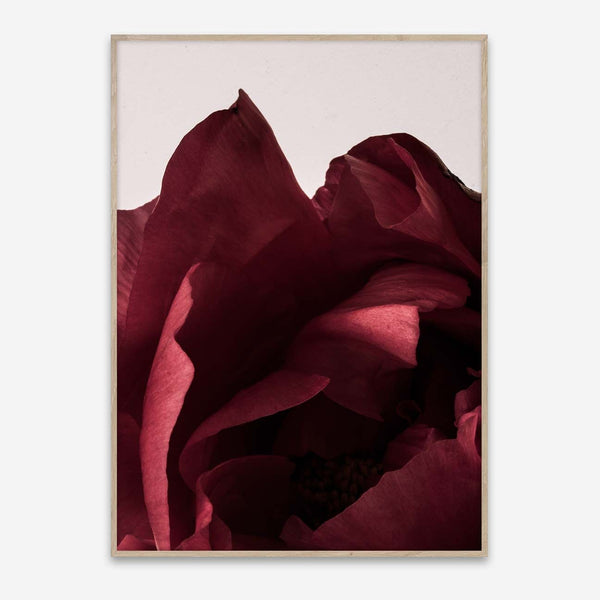 Paper Collective | Peonia 03